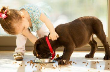 Κατοικίδια ζώα και παιδί